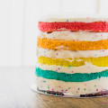 Some days call for a rainbow cake. © 2015 Sugar + Shake